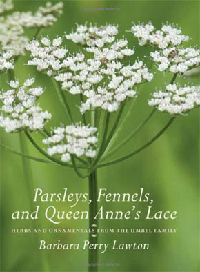 Parsleys, Fennels and Queen Anne´s Lace - Herbs and Ornamentals from the Umbel Family