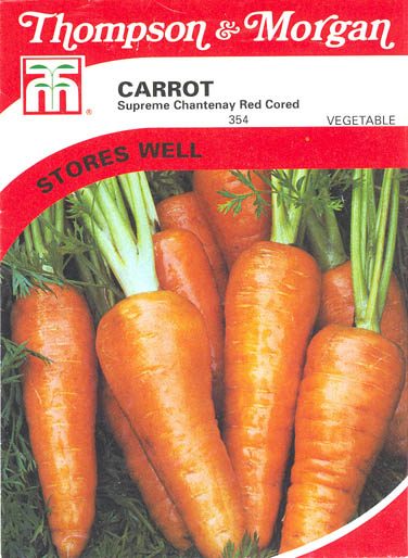 Gulerod, Chantenay Red Cored, Daucus carota </i>L. subsp.<i> sativus