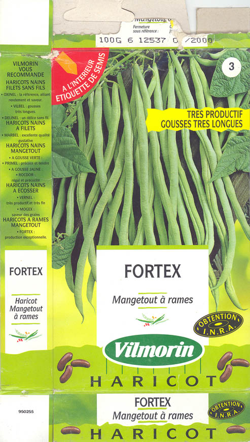Havebønne, Fortex, Phaseolus vulgaris </i>L.<i>