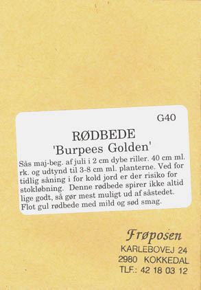 Rødbede, Burpees Golden, Beta vulgaris </i>L. var.<i> vulgaris