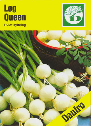 Kepaløg, Queen, Allium cepa </i>L.<i>
